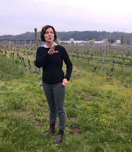 Matilde Poggi, Owner