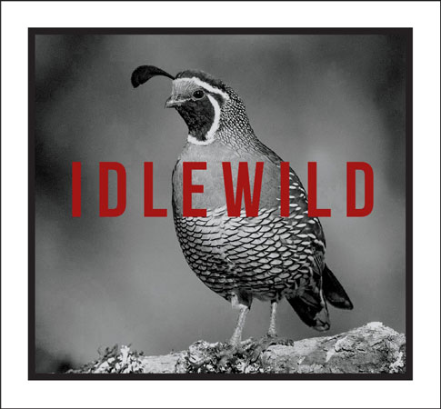 Idlewild 2019 'Flora & Fauna' Red, Mendocino