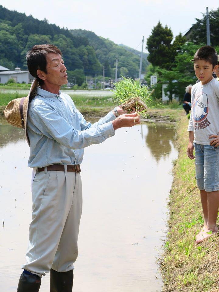 Azuma Rikishi Rice Harvest