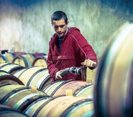 Damien Laurent working in the cellar in 2015.
