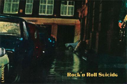 Ad Vinum 2019 'Rock'n Roll Suicide' Rose, Vin de France (Rhone)