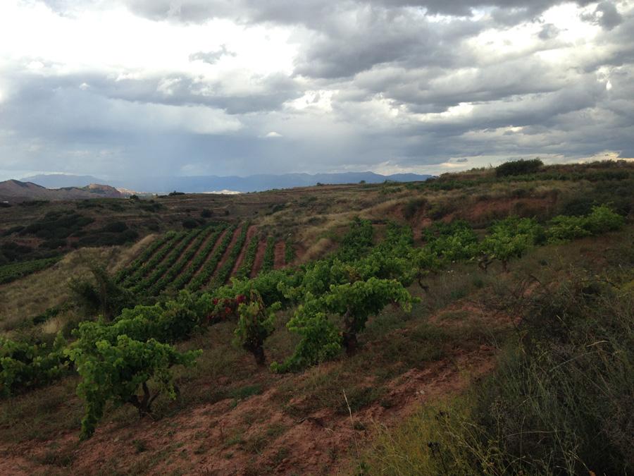 La Antigua in Sierra de La Demanda
