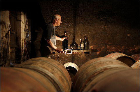 Jean-François Fillastre in his cellar (photo by Rondolphe Escher for The New York Times)