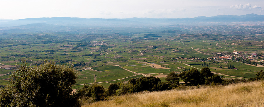 La Rioja, Spain (photo by Friederike Paetzold)