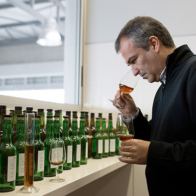Ricardo Freitas evaluating Madeira samples.