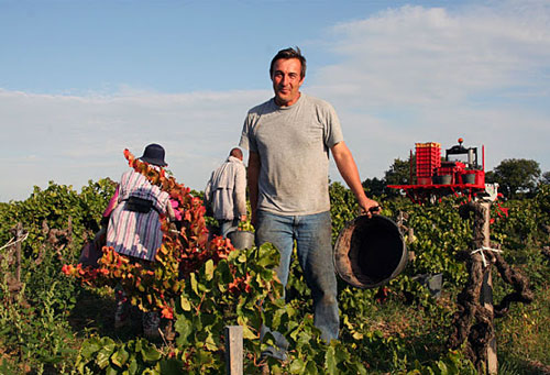 Jean-Paul Versino during 2012 harvest.