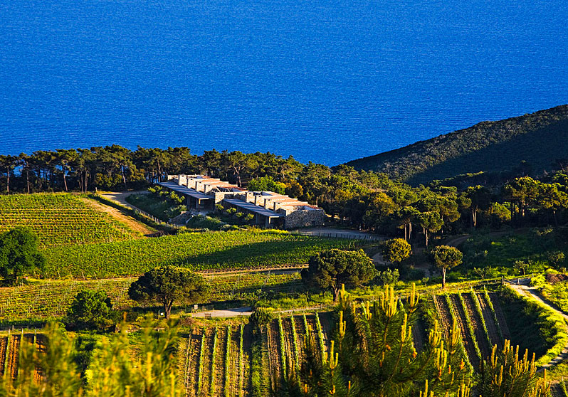 Tenuta delle Ripalte Winery designed by Tobia Scarpa