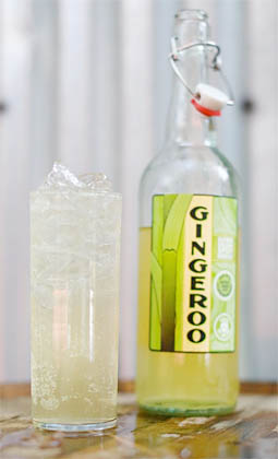 Old New Orleans Rum 'Gingeroo' Spicy Ginger Ale Cocktail (20 proof)