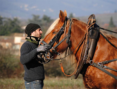 Julien Merle with his Horse