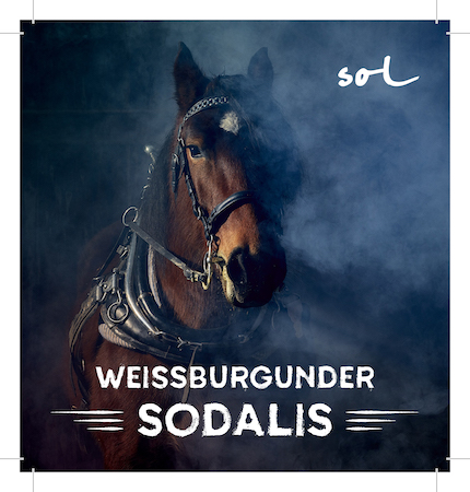 Michael Gindl - Weingut MG vom SOL 2017 'Sodalis' Weissburgunder
